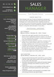 Executive Resume Writing Tips Cv Samples Executive Examples Sample Telecom Manager Profile