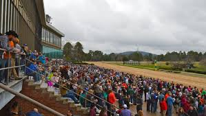 A First Timers Guide To Oaklawn Park Americas Best Racing