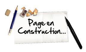 """Résultat de recherche d'images pour """"gif page en construction"""""""