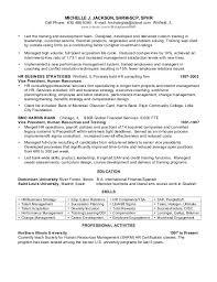 Vp Hr Resume Professional Resume Templates