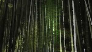 japanese garden lighting. YouTube Premium Japanese Garden Lighting A