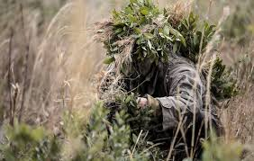 Marine Corps Scout Sniper 5 Things I Learned From The Marine Corps Scout Sniper School Task