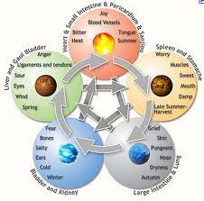 Chinese Medicine School Basic Five Element Theory