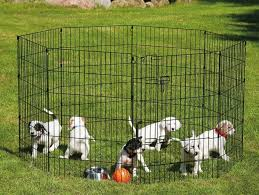 how to build a dog pen
