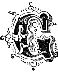 G Ornamental Letter Typography Drawing Fancy Letters