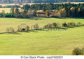 grass field from above. From Above View On Grass Field And Colorful Trees - Csp31622331 From A