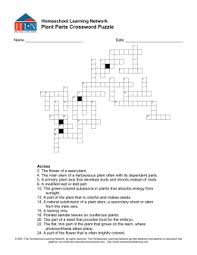 literature study guide don quixote plant parts crossword puzzle homeschool learning network