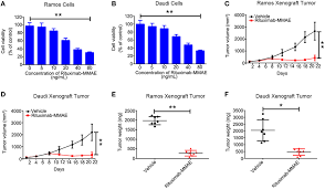 Frontiers Activating Autophagy Enhanced The Antitumor