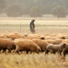 Shepparton news southern riverina news yarrawonga chronicle national publications dairy news australia. Shepparton News Contact Information Journalists And Overview Muck Rack