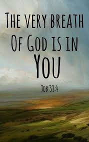 Jesus Christ Quotes: the very breath of god is in you | Bible quotes,  Biblical quotes, Scripture quotes