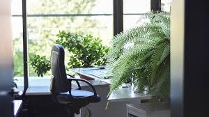 Windowless Office Design The 1 Office Perk Natural Light