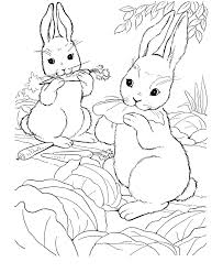 Small Picture Farm animal coloring page Wild bunny rabbits ANIMALS TEMPLATES