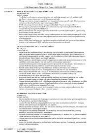 Marketing Analytics Manager Resume Samples Velvet Jobs