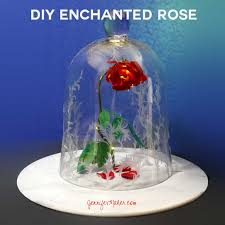 Lighted Glass Cloche Diy Beauty The Beast Rose Jar Its Enchanted