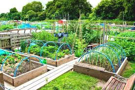 Small Picture Awesome Small Vegetable Garden Design Ideas Images Home