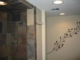 basement bathroom renovation ideas. pictures gallery of the fascinating bathroom ideas for basement spaces design renovations renovation s