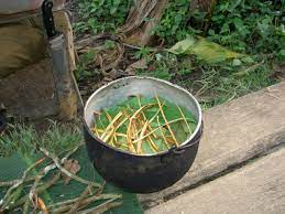 For me, ayahuasca was as good as ...