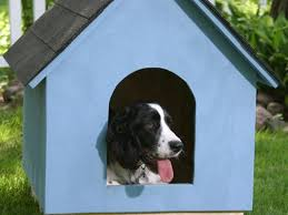 16 free diy dog house plans anyone can