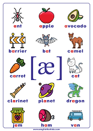 This is done by utilizing universal symbols to represent the spoken sounds in language. International Phonetic Alphabet Ipa Poster Phonetics For Kids Phonics Posters English Phonics