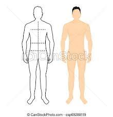 Body Chart Man Anatomy Silhouette Size Human Body Full Measure Male Figure Waist Chest Chart Template