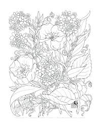 flower coloring pages flower coloring page coloring pages flowers pdf
