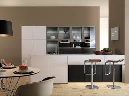 Small Picture Affordable Modern Kitchen Cabinets Marvellous Design Modern