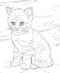 Small Picture Cats coloring pages Free Coloring Pages
