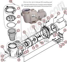 polaris pool pump diagram related keywords suggestions polaris pentair challenger wiring diagram engine