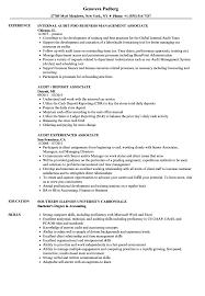 Associate Audit Resume Samples Velvet Jobs