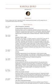 Chiropractic Resume Impressive Chiropractor Tech Resume Professional Resume Templates