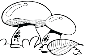 coloring more images of mushroom coloring pages free trippy shroom