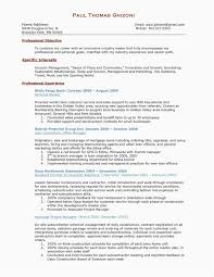 Commercial Loan Officer Business Plan Template Unique Business Plan