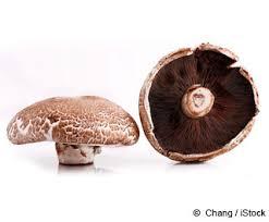portobello mushrooms nutrition facts