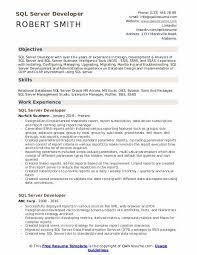 Sql Server Developer Resumes Server Developer Resume Samples Qwikresume