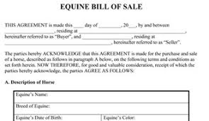 Equine Bill Of Sales Equine Bill Of Sale Form