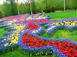 Актуални статии за цветна градина по популярност. Naj Golyamata Cvetna Gradina V Celiya Svyat Tialoto