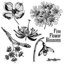 レトロな夏の装い花柄デザインオーナメント無料ベクター素材70個