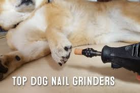 dog nail grinder what are dog nail grinders used for