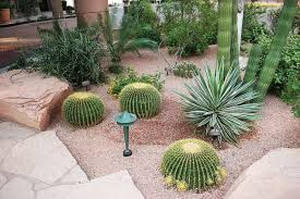 Small Picture Desert Landscape Design Ideas Home Design Ideas