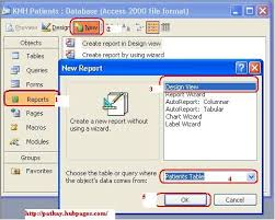 Microsoft Office Reports How To Create Reports Using Microsoft Office Access 2003