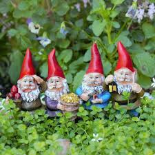 fairies browse s gnomes
