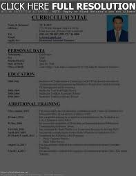 What Does Cv Stand For Resume Resume Work Template