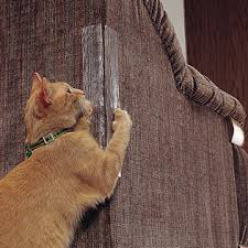 How to Prevent Cats from Scratching Furniture Melpomene