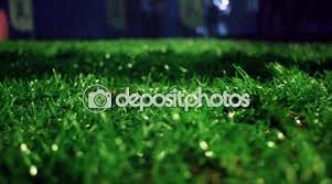 grass field at night. Green Grass Background. Stadium Night. Soccer Field \u2014 Stock Video At Night