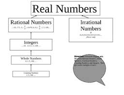 11 Factual Real Numbers