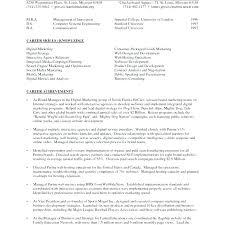 Digital Marketing Resume Template Metabots Co