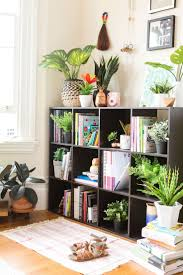 Best 25+ Artificial indoor plants ideas on Pinterest | Plants for ...