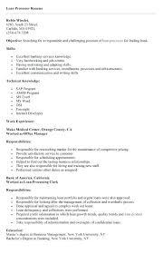 Mortgage Loan Processor Sample Resume Podarki Co