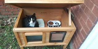 outdoor cat tree house review of the hutch company outdoor cat house diy outdoor cat tree