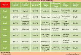 13 Month Old Feeding Schedule Milk Food Recipes